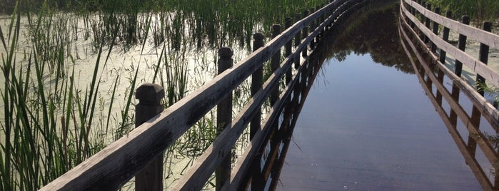 Anoka County Trails is one of MN Outdoors (Parks/Lakes/ETC).