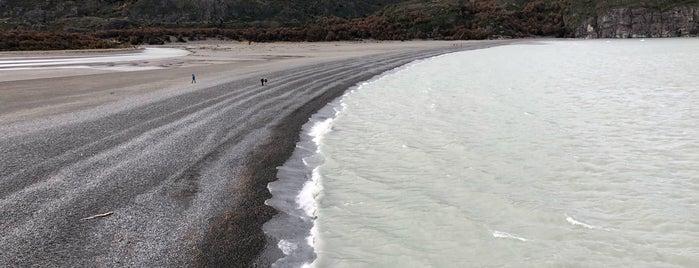 Lago Grey is one of สถานที่ที่ Liz ถูกใจ.