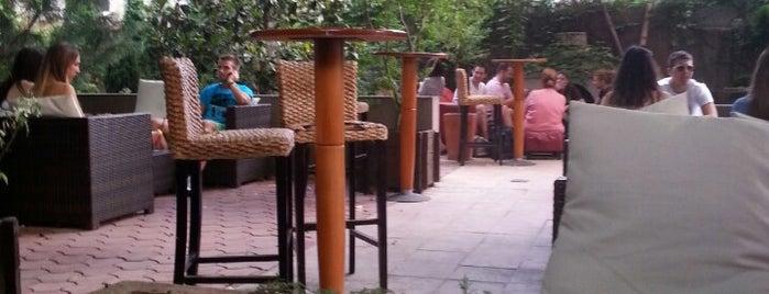 House is one of Kafe-barovi Beograda.