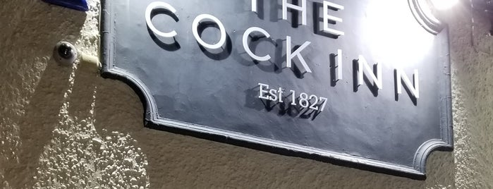 The Cock Inn is one of Lou'nun Beğendiği Mekanlar.