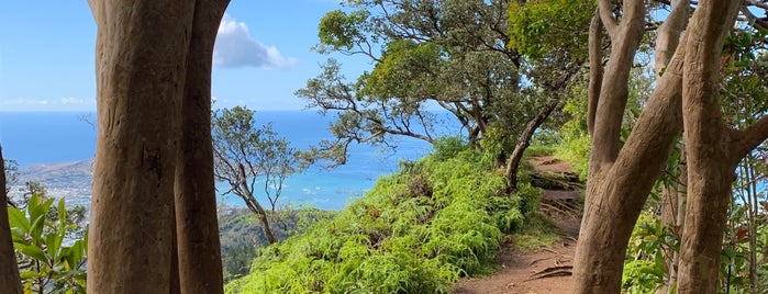Kuliouou Trail is one of USA Hawaii Oahu.