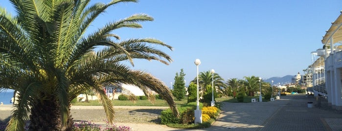 Пляж отеля «Звездный» is one of Сочи.