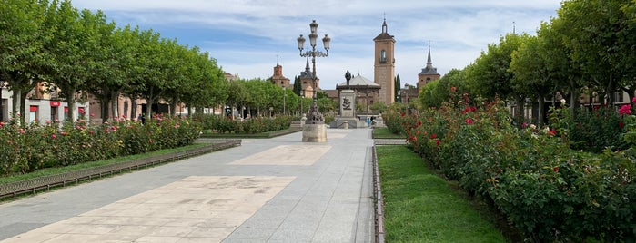 Alcalá de Henares is one of Mymさんのお気に入りスポット.