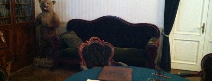 Музей-квартира Н. А. Некрасова is one of Искусство и природа!.