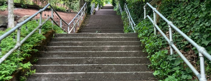 E Howe Street Stairs is one of 2017 City Guide: Seattle.