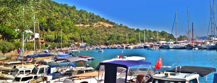 Torba is one of Bodrum - List -.