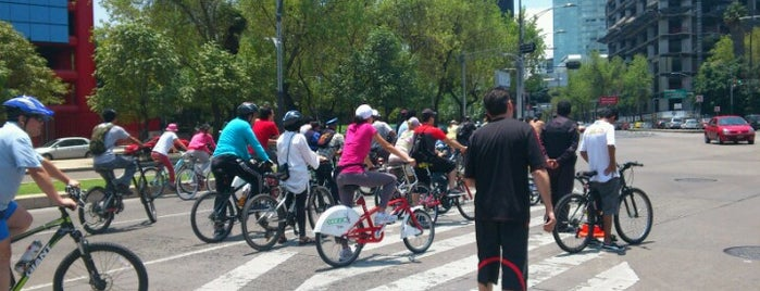 Paseo Ciclista is one of Locais curtidos por Angeles.
