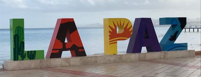 Malecón is one of Heshu 님이 좋아한 장소.