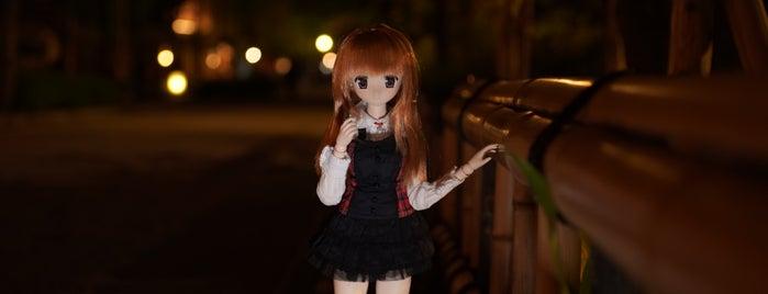 祇園白川 十六夜桜 is one of Sen : понравившиеся места.