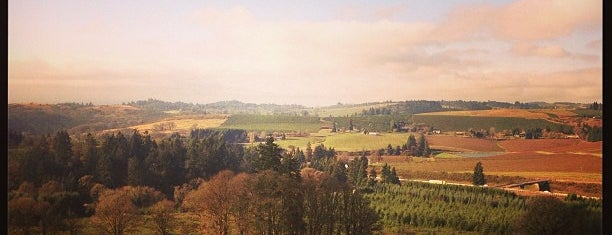 Willamette Valley Vineyards is one of Lieux qui ont plu à Susan.