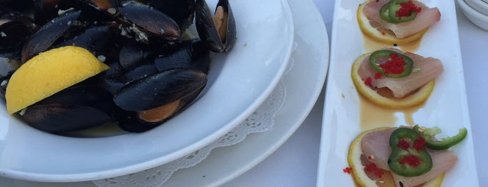 Mitch's on El Paseo Prime Seafood is one of Palm Springs Favs.