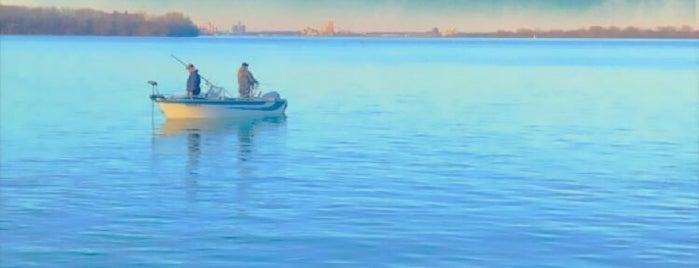 The Waterfront Wyandotte is one of Lieux sauvegardés par Amy.