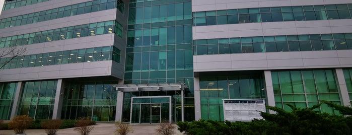 Huawei Russia HQ is one of Офисы, в которых можно подписаться на фрукты (ч.2).
