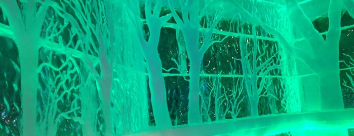 Minus 5° Ice Bar is one of Food & Booze in NYC.