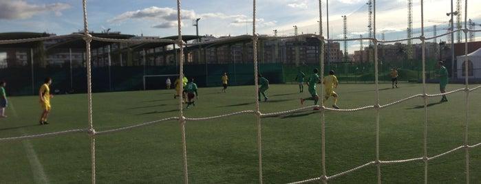 Campos de Fútbol Canal is one of Lieux qui ont plu à Daniel.