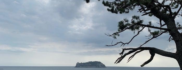 올레 7코스 is one of Jeju Island.