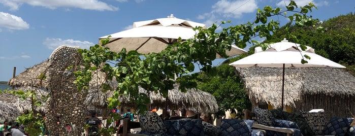 Alchymist Beach Club is one of Orte, die Karol gefallen.