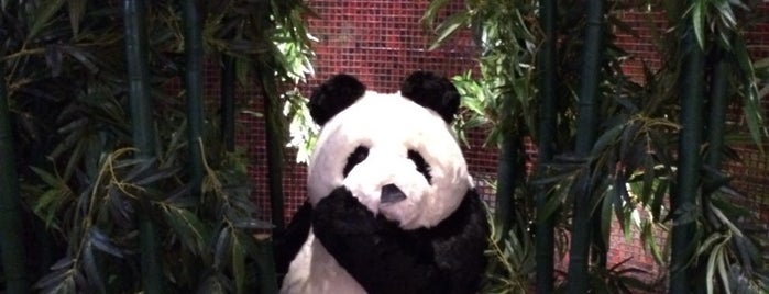 Panda! is one of Kennedy.