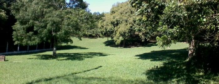 Parque Vinte de Maio is one of Tempat yang Disukai Anderson.