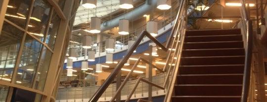 Bibliotheek Maastricht University is one of City Guide Maastricht.