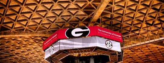 Stegeman Coliseum is one of dos....