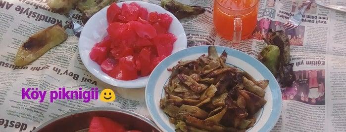 Kaynarca is one of Kütahya | Merkez Köyler.