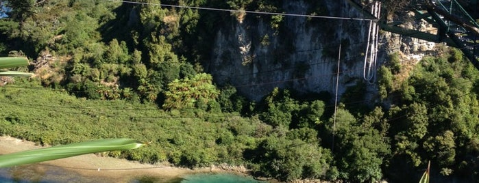 Taupo Bungy is one of New Zealand.