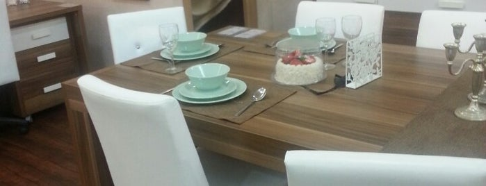 DOGTAS exclusive is one of Furniture.