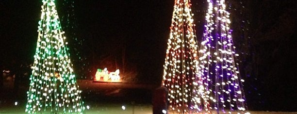 Bright Nights at Forest Park is one of Laurie's Saved Places.