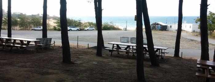 Sofular Plaj is one of Locais curtidos por Turgut🌱🌳🌲🌴🍁🍂🍃🌻.