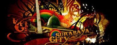 Characteristic of Surabaya