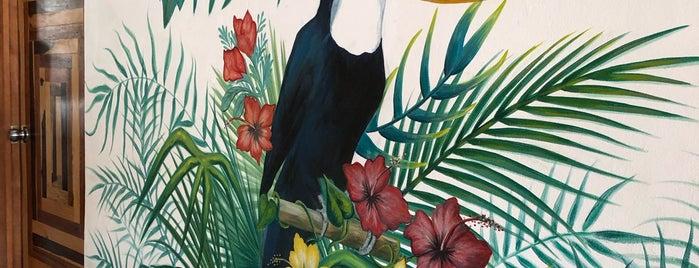 Fresco Habito is one of Lugares favoritos de Jessica.