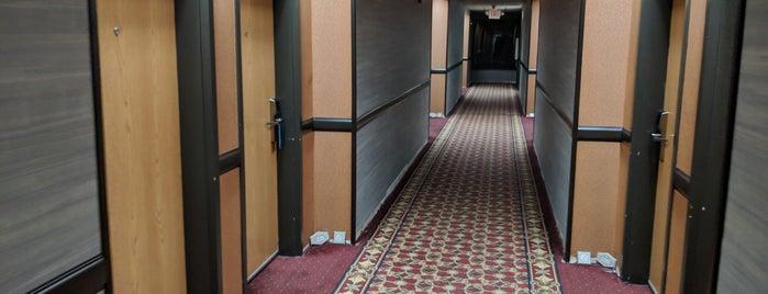 Hampton Inn by Hilton is one of Lieux qui ont plu à Ariev.