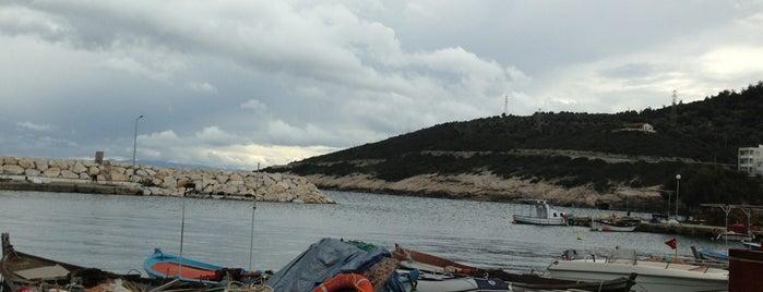 Kaynarpınar is one of Orte, die Çağlayan gefallen.