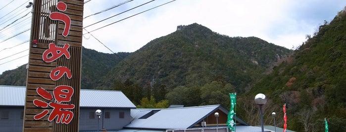 名号温泉 うめの湯 is one of 訪れた温泉施設.