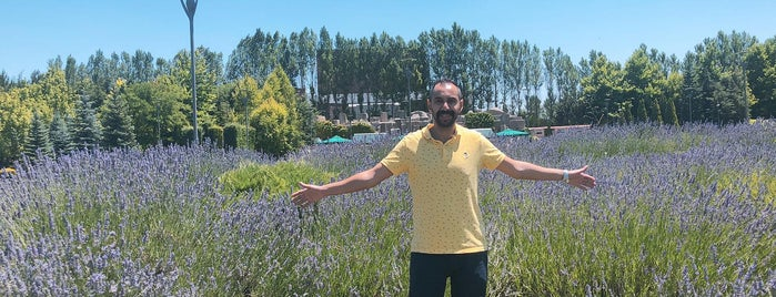 Sazova Bilim Kültür ve Sanat Parkı is one of สถานที่ที่ Erdi ถูกใจ.