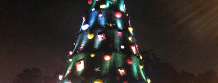 Árvore de Natal do Ibirapuera is one of Katia : понравившиеся места.