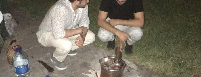 batı parkı is one of mehmetniyaziさんの保存済みスポット.