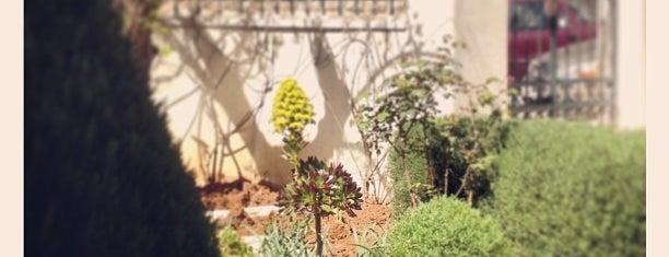Jabel Al Luweibdeh is one of Amman.