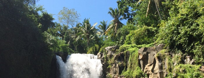tukad cempung waterfall is one of Locais salvos de Dmitry.