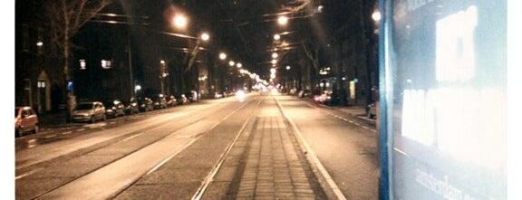 Tramhalte 's-Gravesandestraat is one of Alle tramhaltes van Amsterdam.