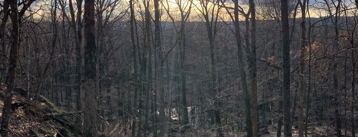 Blue Mountain Reservation is one of Hikes.