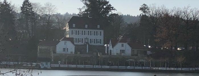 Großer Teich is one of Posti che sono piaciuti a Jak.