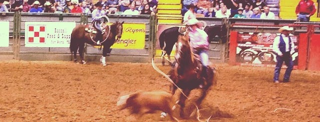 Stockyards Championship Rodeo is one of Fun Things To Do.
