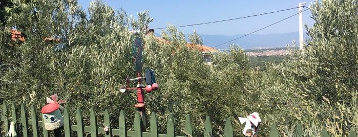 Dem Bahçe is one of Balikesir.