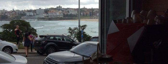 Buckler's is one of Sydney.