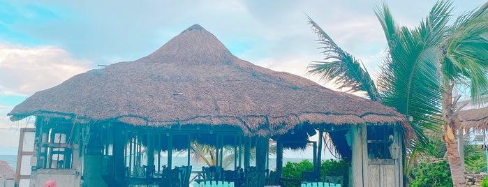 Posada Punta Piedra Hotel is one of Tulum.