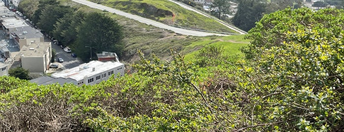 Twin Peaks Summit (South/Noe Peak) is one of Tyさんのお気に入りスポット.