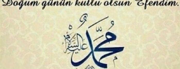 Güzelbahçe 2 Nolu Derya ASM is one of Orte, die ahmet gefallen.