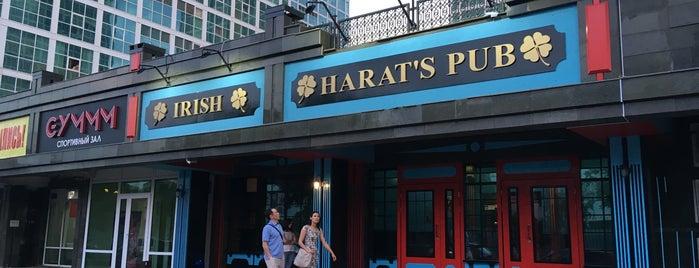 Harat's Irish Pub is one of Astana Cider Spots.
